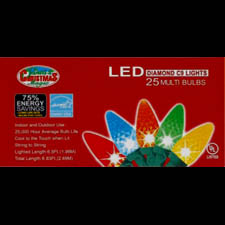 Set of 25 LED C9 Light String