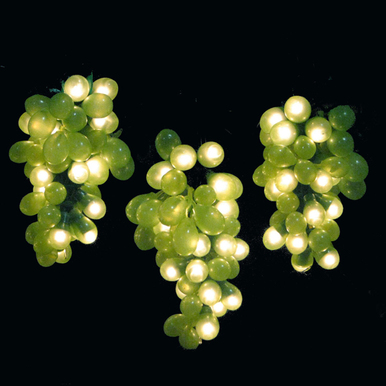3 Green Grape Light Clusters